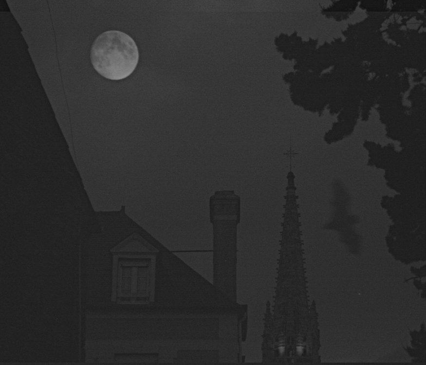 Nuit.thumb.jpg.fdcf400b077655d693e8fa5eef93ad01.jpg