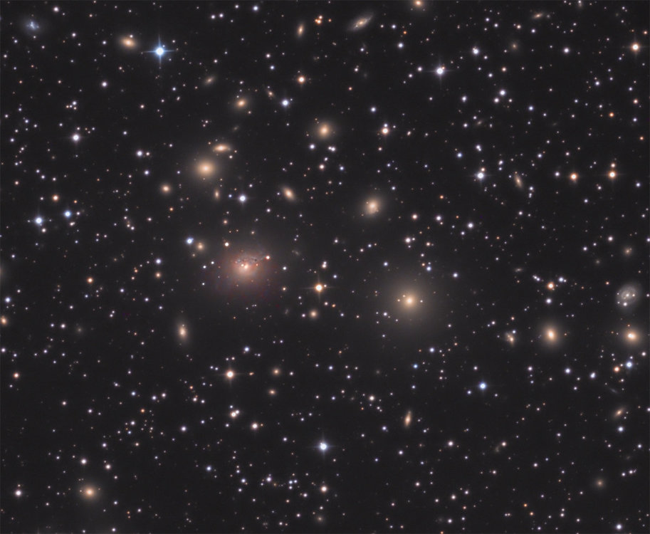 NGC_1275.thumb.jpg.2b4d65c6a11c9f9110b41a682b3c2413.jpg